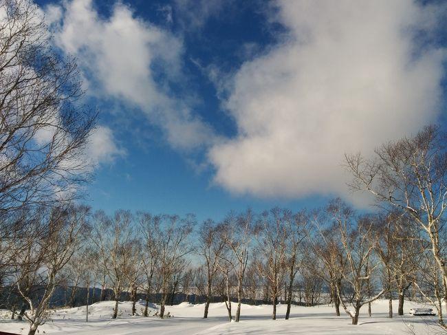 モフモフの雪を求めて、冬の北海道へ!<br /><br />2泊3日(スキーは2日間)と短い日程なので、規模の小さいマウントレースイスキー場にしました。<br /><br />しろくまツアーで空港とホテル間の送迎・朝食・リフト券付 27,300円とお得なツアー!!<br /><br />今シーズンはぜんぜん雪山に行けなかったので、それを取り戻すべく滑り倒してまいりました ♪(*'-^*)b<br /><br />まずは、カルビー北海道工場見学・ドレモルタオ・新千歳空港 : シュタイフ ディスカバリーウォーク・アイヌ文化展示コーナー・ロイズ チョコレートワールド 編です。<br /><br /><br />夕張ホテルシューパロ・ゆうばりキネマ街道・マウントレースイスキー場・お土産 編はこちらです。↓<br />https://4travel.jp/travelogue/11328279<br />