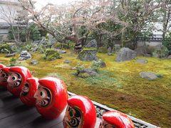 京都の達磨寺では大節分祭