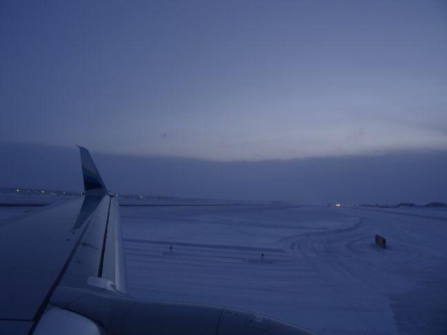 乗り継ぎでは何度もアメリカに行ったが、滞在目的でアメリカに向かうのは初めてで、その地がなんと冬のアラスカとは…。<br /><br /><br />はじめてのアメリカはすべてが凍りついていました。