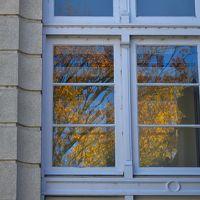 紅葉の下 落ち葉の上を ゆっくりと歩く ~昨秋のお散歩日記~