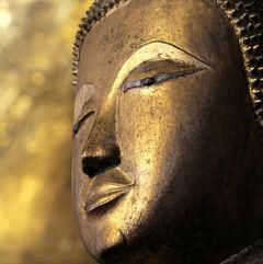 Laos メコンの宝石(20/20) 世界遺産ルアンパバン 眼の離せないブッダたちの寺院 ワット・マイ・スワンナプーム・アハーン
