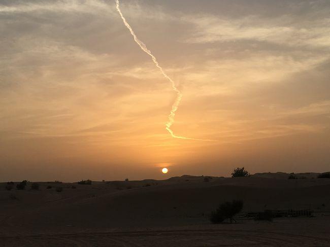 この旅の最後は、デザートサファリ ❗️<br />4WD にて砂漠を縦横無尽に疾走‼️