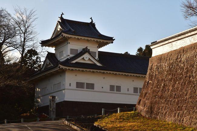 宮城県の仙台城、白石城、多賀城、輪王寺を訪問。<br />岩手県の中尊寺も訪問。