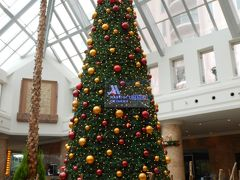 沖縄子連れクリスマス旅行 / オキナワマリオットリゾート&スパ ①