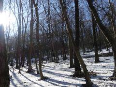 みかも山公園の残雪_2018_そろそろ花が、の期待空しく、日陰の残雪だけだった(栃木県・岩舟町)