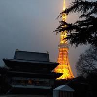 雪の中の増上寺。おまけ上野の東京国立博物館