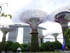 シンガポール航空で行くシンガポール2泊3日 モルティブの帰りに寄っちゃおう!