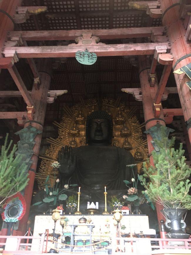 4日目は再び奈良に戻り、今回の旅の目的を果たしに行きました。<br />中学の修学旅行以降も大人になって2回行きましたが、毎回違う感覚をいただいている奈良。<br />一層大好きになりました。