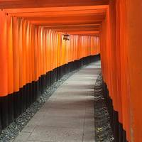 ちょっと遅かった京都の紅葉