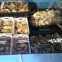 龍野と室津の古い街並みと牡蠣を楽しむ