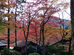 仙石原 長安寺の紅葉を見る箱根日帰り 紅葉の長安寺散策その2