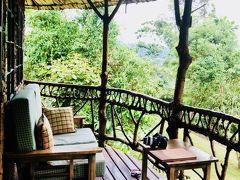野生のゴリラに会いに行ってきた!④ウガンダ移動/ブウィンディ国立公園ゴリラトレッキング編