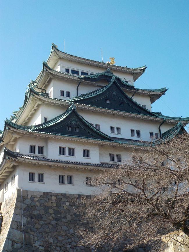 2月は受験シーズン。長男の中学も受検期間で、部活が一週間近く休みでした。<br />  最近は、次男坊と2人で歴史旅に行くことが多かったのですが、今回は長男との2人旅。<br />本人の希望で、名古屋観光に行って来ました。5月からは入城できなくなる話もあるし、東京からそんなに遠くないですしね。<br />  観光と言っても、我が家の興味は歴史に関するもの、それもメインは戦国時代。<br />名古屋城に熱田神宮、犬山城、清洲城を巡ってきました。<br /><br />