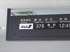 溜まったマイルを使って東京へ!!