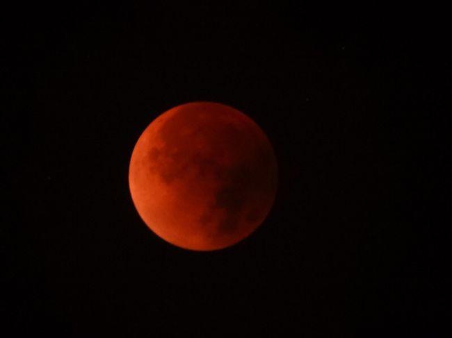 赤色の月で素晴らしかった!<br />夜中の3時だから、眠たさと戦いでした