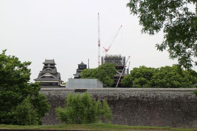熊本の旅、3日目、午後、最後は、熊本城と水前寺公園を見て、空港に戻ります。<br />夕食は熊本ラーメンを空港でいただきました。<br />熊本城は、修復中で、まだまだ工事は続きそうです。石垣の修復は大変そうです。<br />城内には、崩れた石垣が並べられていました。崩れたままの石垣もあります。<br />修復が待ち遠しいです。。。。。<br />