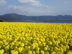 早春の指宿温泉→桜島→霧島温泉の旅1