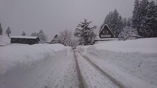 母と富山に行って来ました。<br />初めての北陸新幹線&初めての富山です。<br />例年の6倍雪が降ってえらいことになっているということで心配だったのですが、無事に旅行ができました。