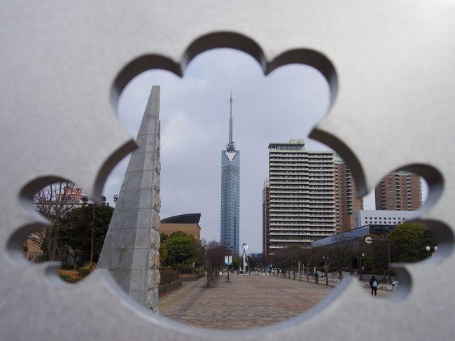 KLからの続きで福岡へ日帰り旅行。KLから戻った翌朝ANAで福岡へ飛び、福岡タワーととんこつラーメン食べ比べを楽しみ、ジェットスターで帰京、子供たちのお迎えへ。そして夜からは香港出張と怒涛の一日でした。もう今年は修行はしないので、福岡をつけなくてもよかったのだけど、0円でつけられるのでついつい・・・帰りは節約してジェットスターで5,470円。<br /><br />1月29日(月) <br />NH241 07:25 HND - 09:25 FUK<br />GK508 14:15 FUK - 16:05 NRT<br />