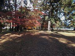 17年秋、紅葉真っ盛りの京都御苑を歩く