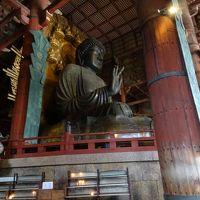 奈良の大仏さんはやっぱり大きかった