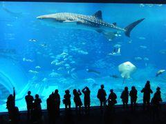 初めての沖縄☆王道観光地を巡るエコ旅