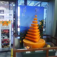 初めての松山・道後温泉(一日目)