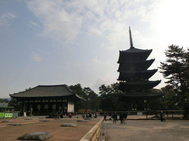興福寺は藤原氏の氏寺として710年に平城遷都とともに建立されました。<br />国宝や重要文化財に指定されている建築物や仏像等見所がたくさんあります。<br />境内の眺めは奈良という雰囲気を感じることができますよ。<br />興福寺には過去何度も訪れましたが国宝館がリニューアルオープンしましたので行くことにしました。
