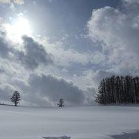 冬の北海道 美瑛の旅