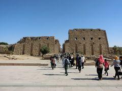 ベストシーズン・冬のエジプト8日間の旅 ⑨ ルクソール~カイロ~イスタンブール~帰国