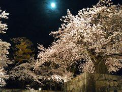 2017年4月・彦根城の夜桜