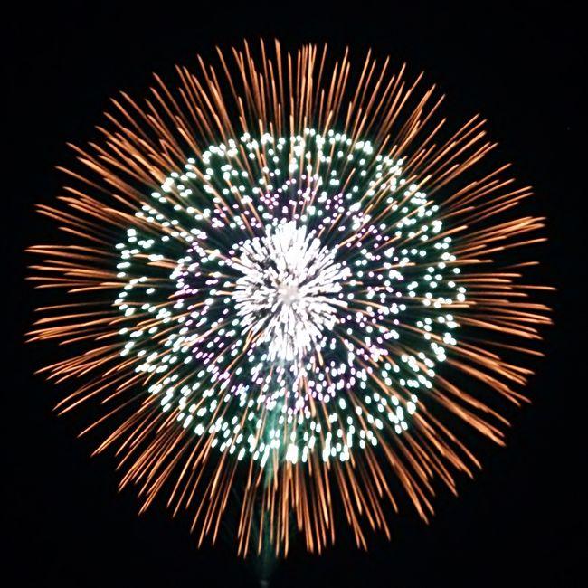 初めての長岡まつり大花火大会!<br /><br />せっかく新潟まで行くので、翌日も観光付きの宿泊コースにしたよ。<br /><br /><br /><br />