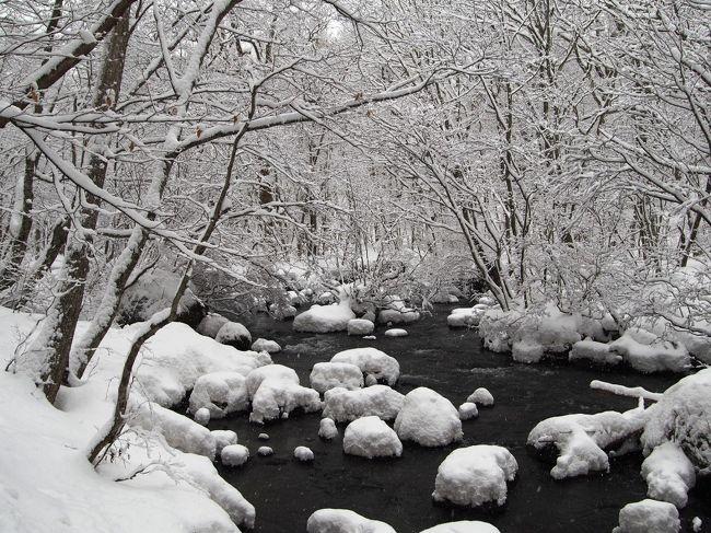 毎年この時期になると、ちょっぴりワクワクする。<br />「さぁ~て雪見旅に出掛けよう!」<br /><br />他の季節より地味になりがちな冬の旅・・・・<br />友人との旅なら、のんびりコタツ旅よりアクティブに!<br />思いっきり雪を堪能する、そんな旅がしてみたい。<br /><br />色々な温泉地・観光地を調べたけれど・・・そんな中から<br />最終的に選んだのが「青森県」への雪見旅。<br />青森なら雪も沢山あるし、秘湯の温泉地も沢山ある。<br /><br />秘湯の温泉地に泊まるプランも考えてみたけれど・・・<br />ネットで見たお宿の冬の写真に心奪われた。<br />この季節しか味わえない華やかで幻想的な雪景色。<br /><br />それを体験する為に「星野リゾート」に泊まって来ました~。<br />今回は2泊3日の旅。星野リゾートに2泊するのは<br />私の中ではちょっぴり(かなり)贅沢な旅なんですが・・・・<br />安いプラン&クーポン利用でどうにか予算内に。<br /><br />1泊目は「青森屋」で、雪のねぶた飾りとお祭り気分を・・・・<br />2泊目は9年ぶりに冬営業を再開した「奥入瀬渓流ホテル」で<br />絶景の雪の奥入瀬を楽しんできました~。もちろん温泉も!<br /><br />観光客の少ない真冬の時期だからこそ、お宿も沢山の工夫を<br />していて・・・ホントに楽しく&忙しい~雪見の旅を満喫しました。<br />きっと皆さんも真冬の青森に出掛けたくなりますよ♪<br /><br />1泊目 三沢の街観光&星野リゾート青森屋滞在<br />https://4travel.jp/travelogue/11328082<br />https://4travel.jp/travelogue/11328540<br />2泊目 八戸観光&星野リゾート奥入瀬渓流ホテル滞在<br />https://4travel.jp/travelogue/11331508<br />3日目 奥入瀬渓流観光&弘前観光