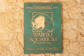 【東京-大阪-ホノルル】 LCCでハワイひとり旅 5 水族館の部