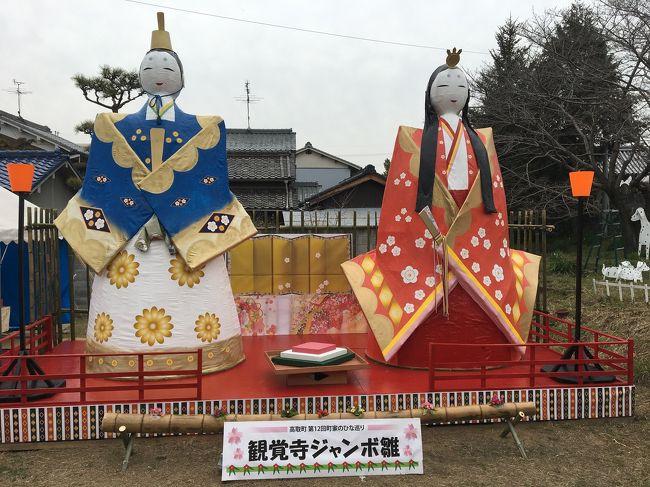 奈良県・高取町はかって薬種業で栄えた町でかっての街道筋が土佐街道です。その街道筋の家々が3月中は自宅に有るお雛様を展示しています。<br />雛祭りの一日街道筋に並ぶお雛様と古い建物を眺めてほっこりとしてきました。<br />近くの壺阪寺は日本霊験記の「お里沢市」で有名です、菩提所が有りました。<br />お昼には薬で栄えた町ならではの薬膳料理をいただきました。