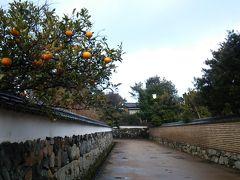 春旅山口旅行4☆2日目午後~萩の街を散策~