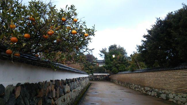 山口旅行2日目午後は萩を散策しました。<br />午後からも雨が降っていたのですが、毛利家墓所となっている東光寺は<br />「聖域」「別世界」「あの世」といった言葉がぴったりの雰囲気でした。<br />行くまではこんなにすごい場所だとは思ってなかった~!!<br /><br />その後オープンしたばかりの明倫学舎を見学しました。<br />1日目と2日目午前に回ったので、少し萩の歴史の下地ができていたためか<br />知っていること、見てきたことが多くて正直あまり印象に残りませんでした。<br />こちらに先に行って、広く浅く知識をつけてから他をまわった方がおもしろいのかなぁ…?<br /><br />その間に雨は少し止み萩の街中を散策。<br />なまこ壁や鍵曲の道が雰囲気あってフォトジェニックでした。<br />あいにくカメラの才能がないので、普通の写真しか撮れませんが…<br />現物はもっと雰囲気があっていいですよ!<br /><br />下関に移動してふぐの夕飯。<br />てっちりにふぐ刺しに雑炊と、大満喫&大満足の夕食となりました。