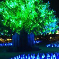 蒲郡-5 ラグナシアd 「光の草原」シンボル樹木&彩色ランタンの電飾 ☆煌めく灯り変化して