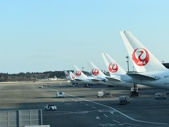 JAL(日本航空)とAAL(アメリカン航空)で行く、アメリカ アリゾナ州 ①