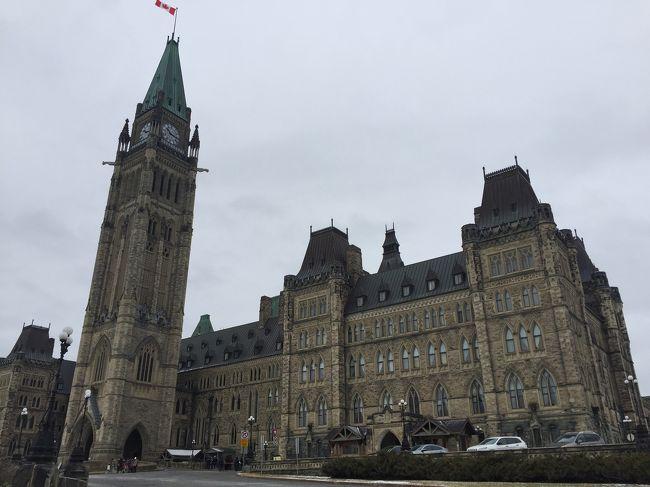 バスツアー<br /><br />カナダ歴史博物館<br />国会議事堂<br />市街地散策