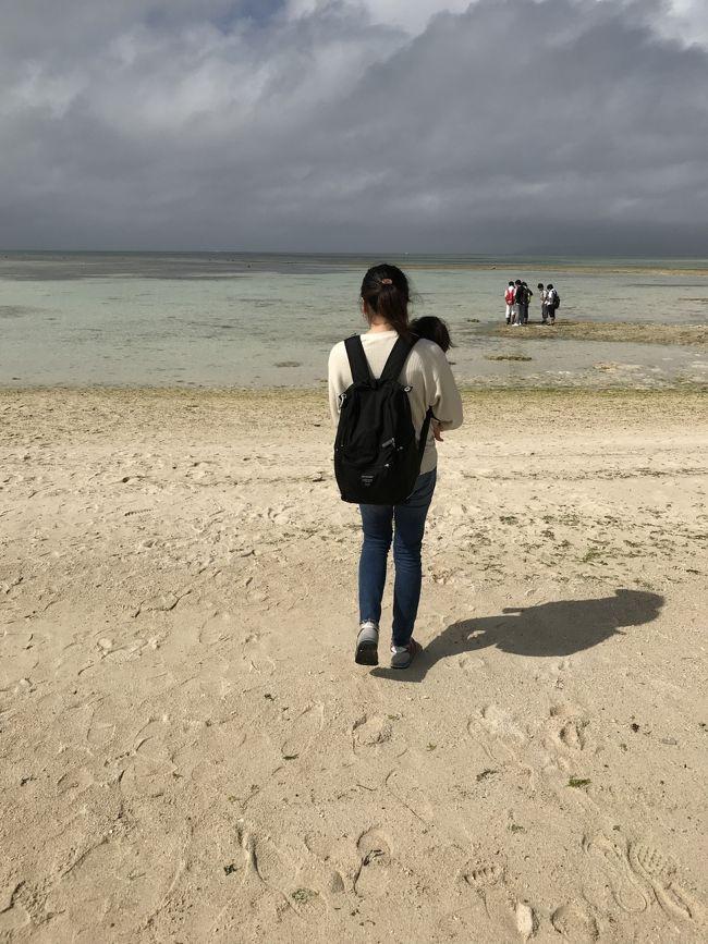 息子(1歳1ヶ月)が産まれて初めての遠出旅行です。<br />病院があったりだとか、直行便があるかとか、いろいろ検討した結果、石垣島に決めました。<br /><br />できるだけゆっくりできるように、予定を詰め込むのはやめました。<br />3/2 名古屋→石垣 フサキ泊<br />3/3 竹富島 ANAインターコンチネンタル石垣リゾート泊<br />3/4 川平湾 ANAインターコンチネンタル石垣リゾート泊<br />3/5 石垣→名古屋<br /><br />当初は雨予報でしたが、行ってみたら雨に降られることもなく、想像以上に温暖で快適でした。<br />もっと薄着を持っていくべきでした。<br /><br />初めての飛行機やベッドや食事など不安はいろいろありましたが、<br />結果として行ってよかったです。