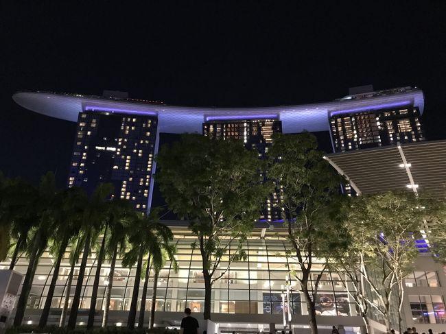 """パパさんが2週間休みをいただけるのと、娘さんの 春休み(卒業記念)を利用して、いままで行ったことのない""""シンガポール""""に行くことにしました。<br />会社からの補助も出るため、その補助金は、ホテル代に充て、航空券は、JALマイレージで無料航空券をGETしました。<br />現地にいる時間を多くしたかったので、往復とも深夜便を利用しました。<br /><br />旅程<br />1日目<br /> 自宅→セントレア 名鉄特急<br /> セントレア→羽田 JL208便<br />2日目<br /> 羽田→シンガポール チャンギ国際空港 JL035便<br /> 空港→マリーナマンダリンホテル MRT<br /> ホテル→セントーサ島<br /> セントーサ島 <br />  セントーサマーライオン <br />  アトラクション <br />  シーアクアリウム<br />3日目<br /> マーライオン<br /> ラッフルズ卿<br /> セントアンドリュース教会<br /> ラッフルズホテル<br /> ファウンテン オブ ウェルス(富の噴水)<br /> ナイトサファリ<br />4日目<br /> マリーナマンダリン→マリーナベイサンズ タクシー<br /> ガーデンズバイザベイ<br /> フラワー・ドーム<br /> クラウド・フォレスト<br /> アートサイエンスミュージアム<br /> インフィニティプール<br /> ガーデンズバイザベイ ナイトショー ガーデン・ラプソディ<br />5日目<br /> ユニバーサル・スタジオ・シンガポール<br /> リトルインディア<br /> カジノ<br />6日目<br /> ホテルチェックアウト<br /> カトン<br /> ショッピング(ザ・ショップス アット マリーナベイ・サンズなど)<br /> カジノ<br /> ホテル→チャンギ国際空港 タクシー<br /> シンガポール→羽田 JL036<br />7日目<br /> 羽田→セントレア JL201<br /> セントレア→自宅 名鉄電車<br /> <br />本旅行記-4-では、5日目~7日目分です。"""