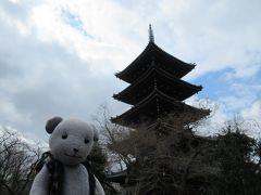 01上野動物園のパンダに振り回される~前編(ドーミーめぐり東京2018その1)