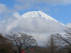 天気に左右される富嶽13景巡りのバスツアー2日間のその2