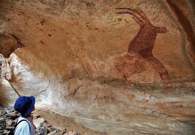 古代人が描いた岩絵がたくさんある「タッシリナジェール」のトレッキングは3日目を迎えた。<br /><br />表紙の写真は、タッシリナジェールを知らない方でも、いつかTVや雑誌で見たことがあるはずの「白い巨人」<br /><br />同じ様な写真が多いですが、今になってみると貴重なものの様な気がして、多めにアップしました。