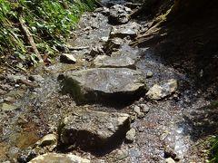 ⑮高尾山健康登山(14) (リフト)-高尾山山頂ー6号路