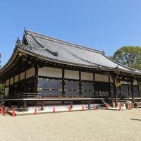 3月中旬の京都の旅(1)ー仁和寺ー