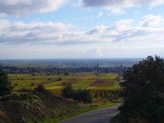 2010年ドイツの秋:④ハールト丘陵にプファルツのブドウ畑の海・秋の波が打ち寄せている