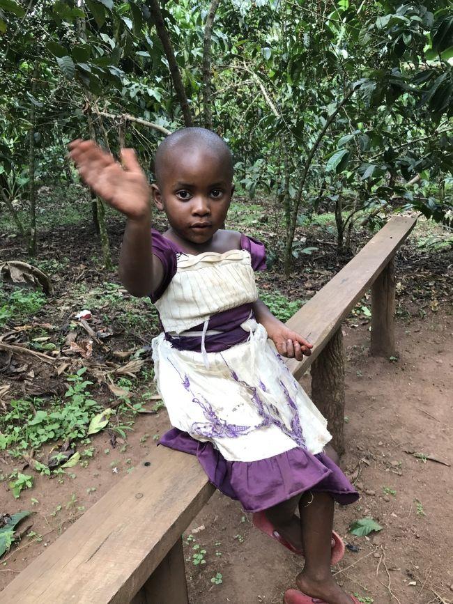12月中旬に10日間の日程で東アフリカに野生動物を見る一人旅に出かけました。<br />ルワンダとウガンダ両方のゴリラトレッキングに参加したかったので、<br />既存のツアーではなく、ウガンダで日本人が経営されている旅行会社 グリーンリーフツーリストさんに旅のアレンジをお願いしました。<br /><br />2017/12/15 成田発 ドバイ経由 <br />12/16 ルワンダ キガリ着<br />12/17 ヴォルカン国立公園ゴリラトレッキング<br />12/18 ウガンダへ陸路で移動<br />12/19 ブウィンディ国立公園ゴリラトレッキング<br />           コミュニティウォーク