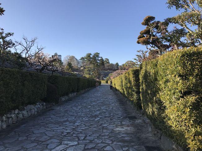 松阪駅の観光案内所でマップをもらいスタート。<br />マップを基に、三井家発祥の地・本居宣長宅跡・伊勢街道の古い町並みを見ながら松坂城跡に向かう。<br /><br />建築物の遺構はないが、天守閣を中心に複数の櫓が並び建っていた、規模の大きな城跡だったと偲ぶことができる石垣だ。<br /><br />城跡に一直線に並ぶ緑の生垣の武家屋敷跡は美しい。<br /><br />城跡まで直に行けば徒歩15分程。